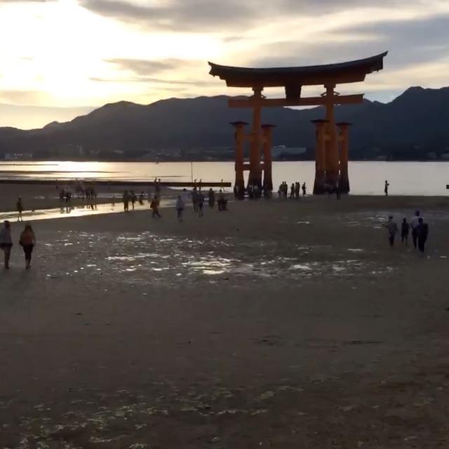 海に映るまで〜厳島神社〜