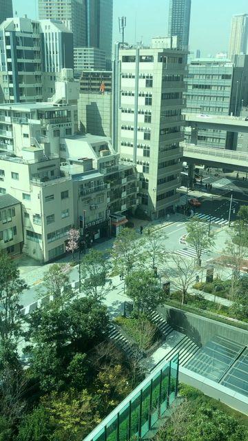東京スプリング