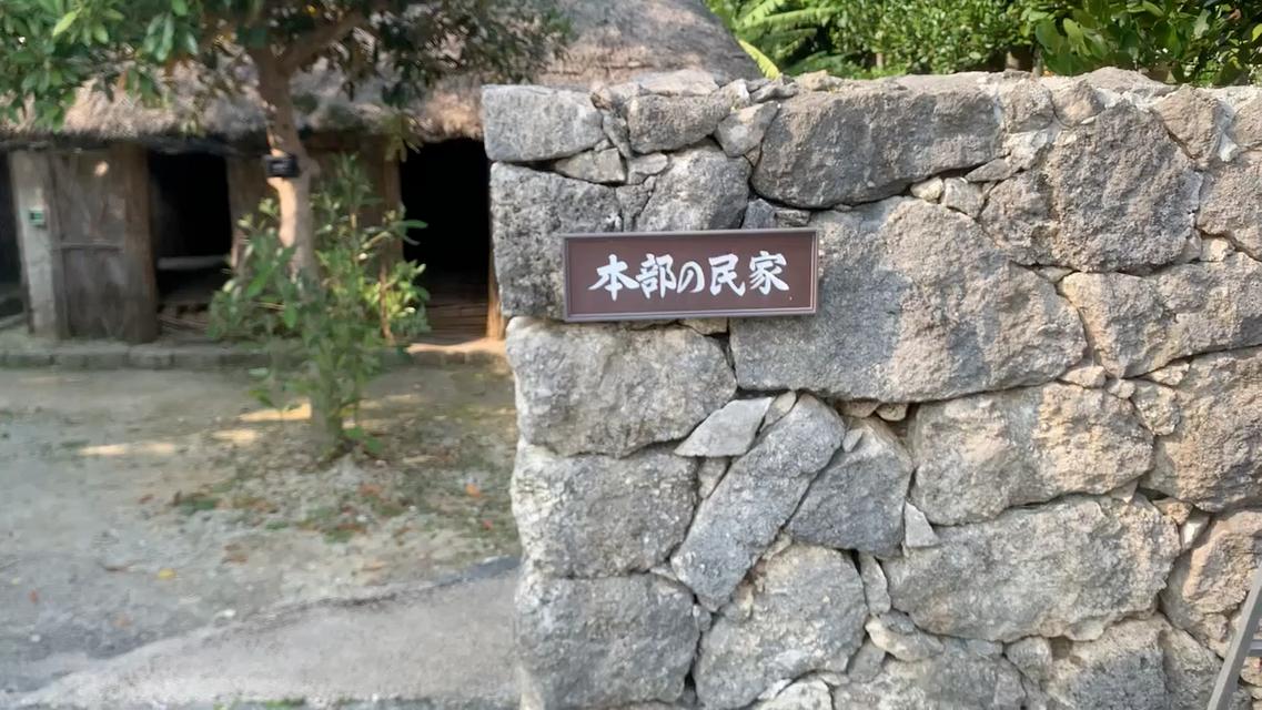沖縄に来たら