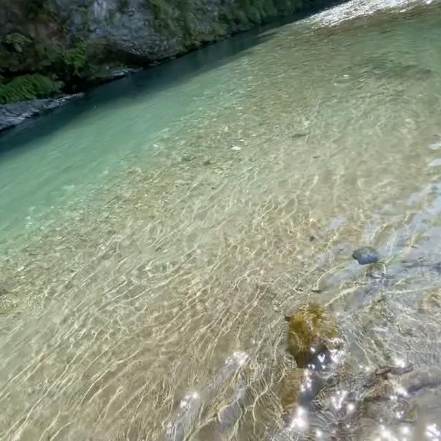 キラキラ輝く川で川遊び